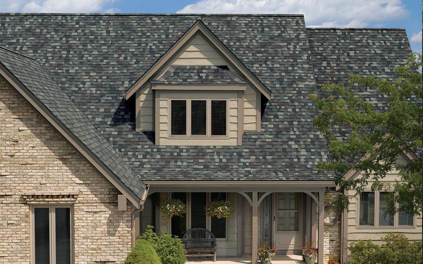 Our Favorite Shingles Win 2019 Women's Choice Award®