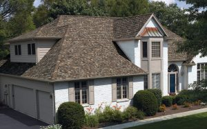 Owens-corning-True-Definiton-Shingle-sand-dune